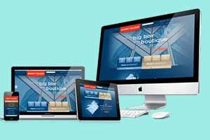 طراحی سایت، گروه طراحی نگارچه
