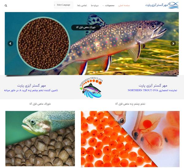 نمونه کار طراحی سایت شرکت